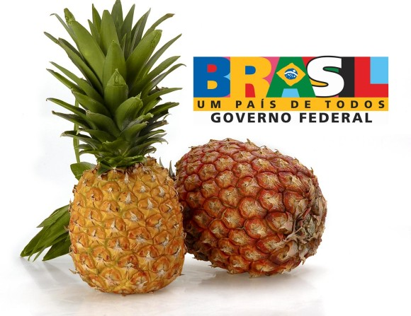 brasil-abacaxi