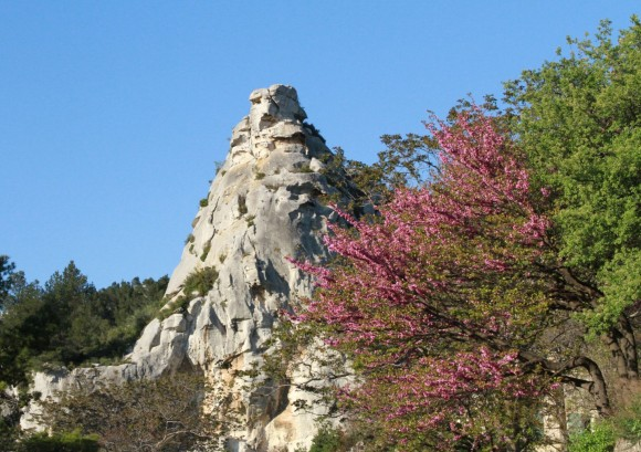 zbmorrotebeauxdeprovence