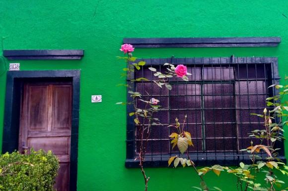 zbverderosa.jpg1